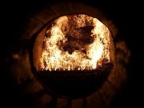 Biomasse Feuerung Feuer 293x220